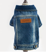 Hundejacke Denim