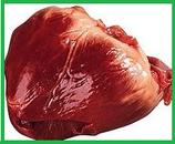 Schweine-Herz