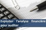 """1 kit de formation """" Exploiter l'analyse financière pour auditer """""""
