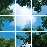 FOTOPRINT afbeelding wolk bos verdeeld over 9 panelen 595 x 595 mm F60WOLK-BOS9