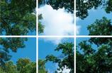 FOTOPRINT afbeelding wolk-bos verdeeld over 6 panelen 595 x 595 mm F60WOLK-BOS6