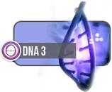 DNA3 (5 Days)