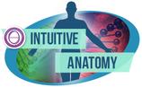 Intuitive Anatomy (15 Days)