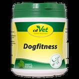 Dogfitness