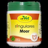 Singulares Moor