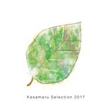 Kesamaru Selection 2017