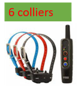 PACK dressage + 6 colliers  GARMIN PRO 70