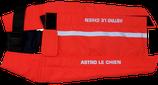 Astro Le Chien Gilet de protection