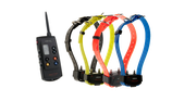 Pack Canicom 1500 avec 4 colliers