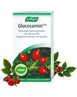 Vogel Glucosamin plus