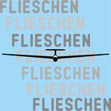 Segelflugzeug Frontansicht