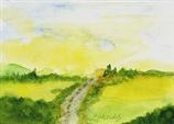 Landschaft / Felder