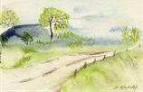 Landschaft / Weg