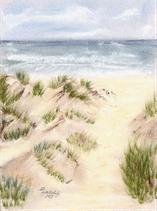 Dünen / Meer