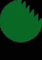 Motorsägenkurs A KOMPLETTMODUL - KWF Zertifiziert (Fällung von Schwachholz und Aufarbeitung von liegendem Holz)