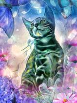 Kitty Cat 4