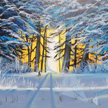 Snow forest sunset