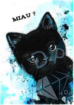 Tiny Black Kitty