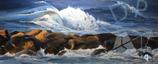 Baltic sea wave