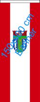 Treptow-Köpenick / Bannerfahne