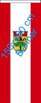 Steglitz-Zehlendorf / Bannerfahne