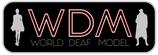 Item NameWorld Deaf Model - Member 200,00€