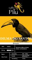 Dilma do Santos