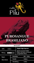 PUROSANGUE BRASILIANO