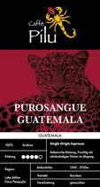 PUROSANGUE GUATEMALA