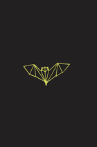 Origami Vleermuis