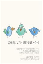 Vogeltjesfeest - Enkele kaart 10x15 cm