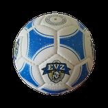EVZ Minifussball OLE