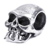 Skull - ap81