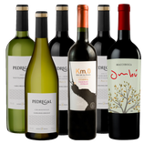 Taste of Uruguay Wine case