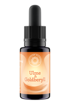 Ulme & Goldberyll Sellizin®-Elixier