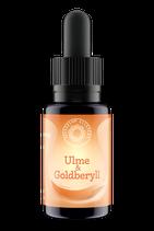 Ulme & Goldberyll Sellizin®-Elixier