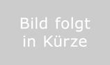 Zander Jumbo (lang Ohr) - Hoffmannseiten - starker Oberträger