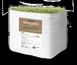 Höveler - Western Alfalfa - 25 Kg Sack