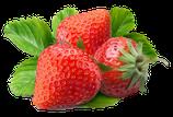 BIO-Erdbeeren 500g