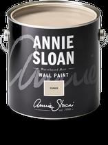 Annie Sloan Wall Paint Canvas