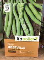 FEVE DE SEVILLE A LONGUE COSSE
