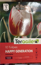 TULIPE HAPPY GENERATION X 10
