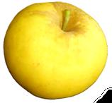 Bio-Äpfel Opal (süß)