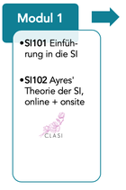 SI102 Ayres' Theorie der Sensorische Integration