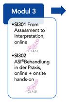 SI302 Ayres' SI Behandlung in der Praxis