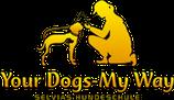 Spielverhalten beim Hund