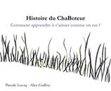 Histoire du ChaBoteur