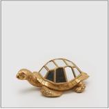 Edg Tartaruga Specchiata Grande