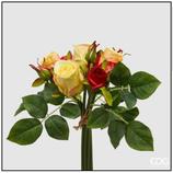 EDG Bocciolo Rosa Giallo/Rosso