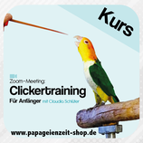 Personal Clicker-Training per Zoom (individuelles Coaching)